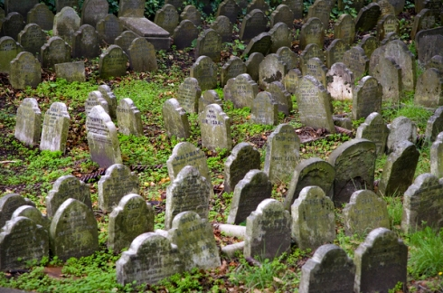 cemiterio de pets2